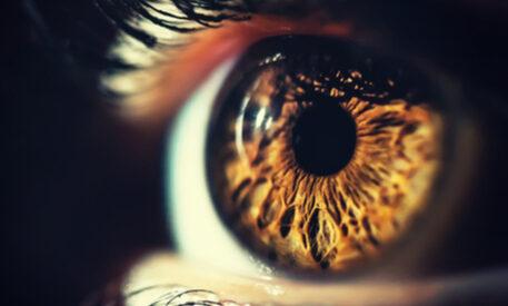 close up brown eye